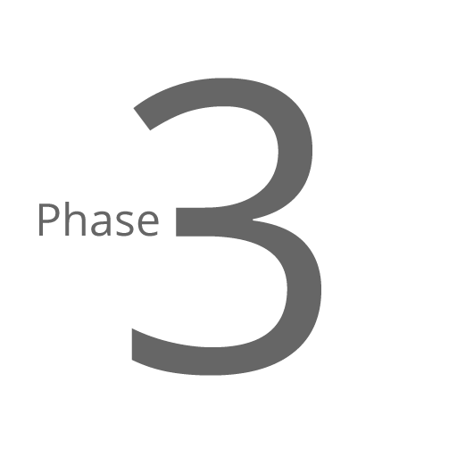 Phase 3 - Business Realization