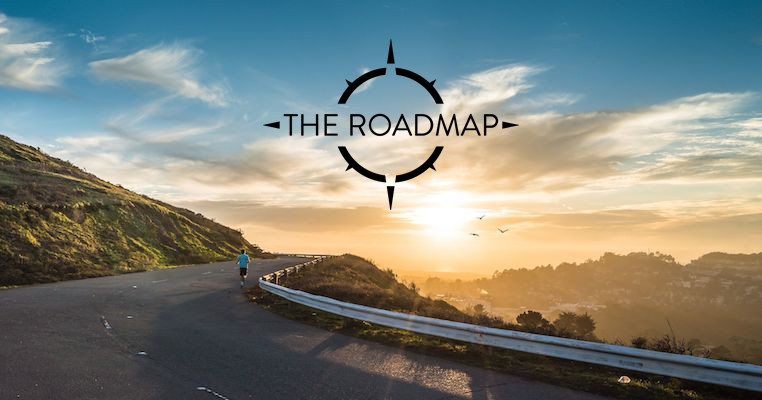 ANALYTICS DEVELOPMENT ROADMAP